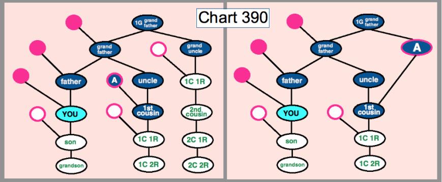 chart 390